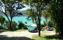 Picnic Bay Campsite . Pelorus Sound/Te Hoiere and Kenepuru Sound area