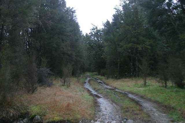 Kirwans Track