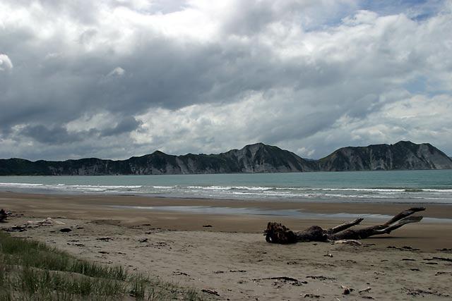 Tolaga Bay Beach
