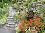 botanic_gardens_12.jpg