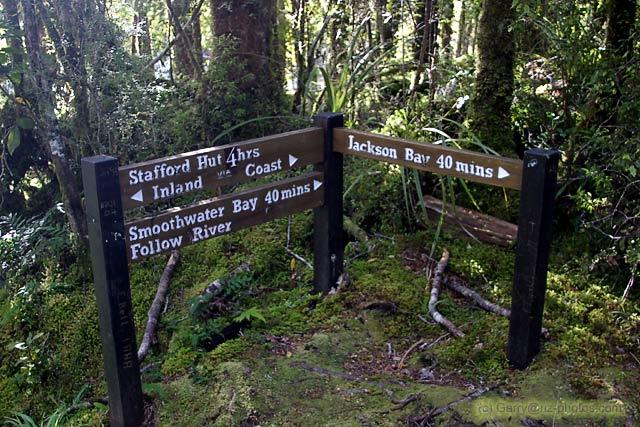 Stafford Bay Track