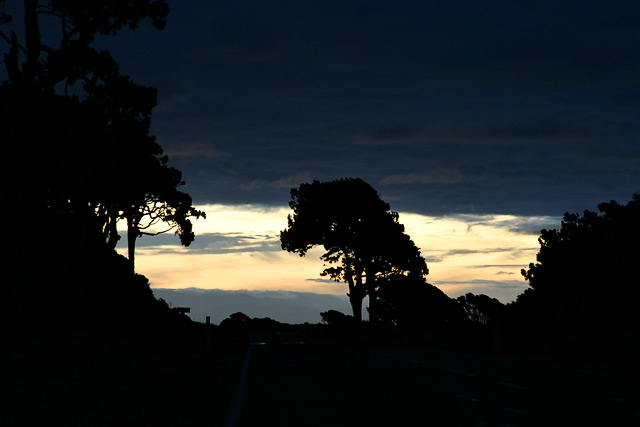night_road_haast