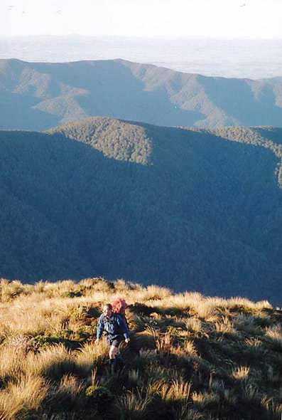 Approaching Alpha Peak Tararua Forest Park